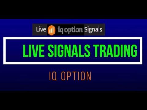 Live trading binary options olympic betting basketball